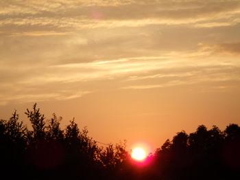 sun2015.jpg