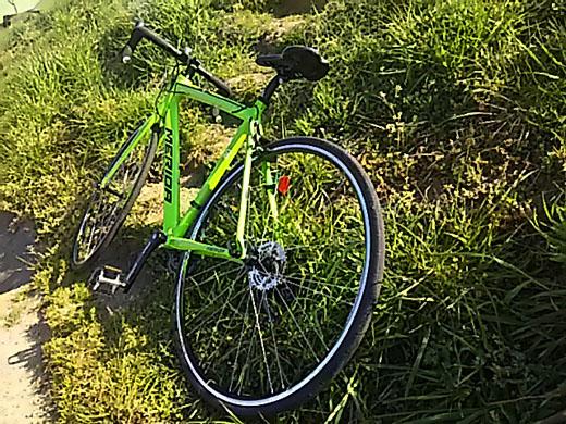 ride80gg.jpg
